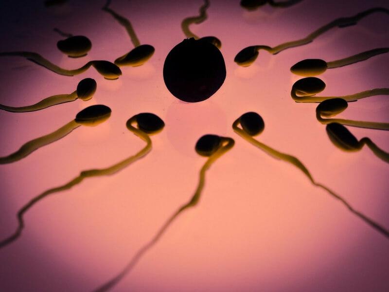 Metode de contraceptie: Tipuri si caracteristici